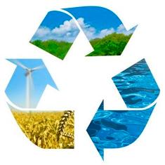 Sostenibilidad con el medio hambiente e instalacion de plataformas flotantes